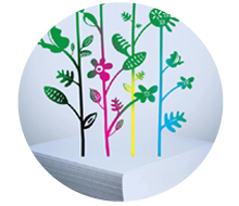 LIFE Green Initiative
